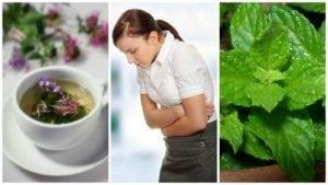 Soulager les symptômes au IBS avec ces 5 herbes curatives