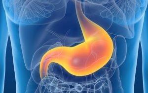 Votre type d'estomac et comment pouvez-vous réduire votre estomac