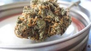 CBD : 3 bienfaits de ce cannabinoïde sur votre santé physique et mentale